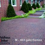 М403 (gala flamea)